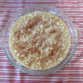 Homemade Cake Batter Frozen Yogurt Recipe Cake Crumbs