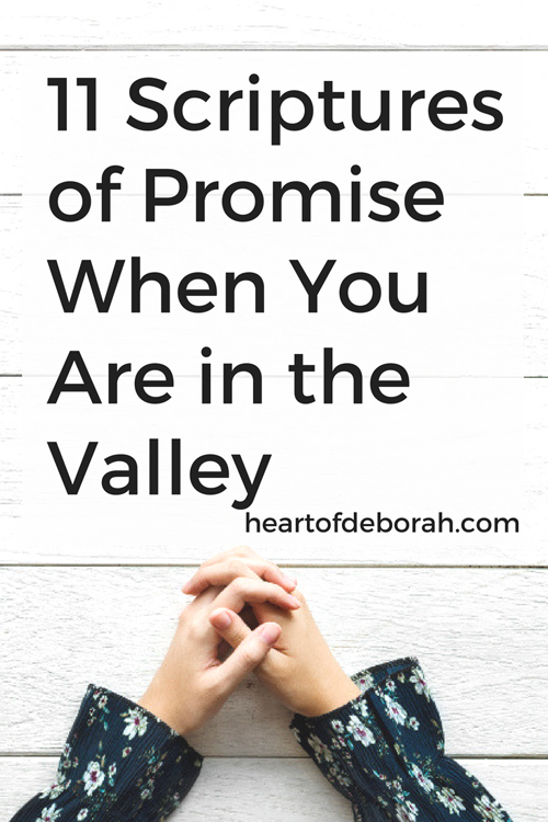 God made wonderful promises to His people. Pray His promises, encourage yourself and claim them in your life! Here are 11 promises of God found in the Bible.