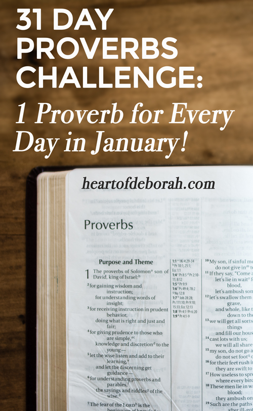 Not a fan of New Year's Resolutions? Start off the New Year by reading a proverb a day for the month of January. Join me in this proverbs challenge to gain wisdom and understanding from God's word.