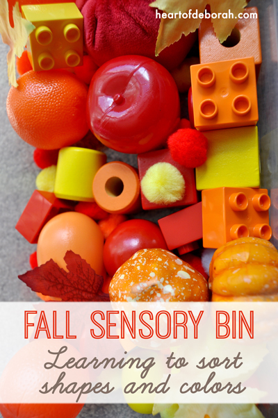Fall sensory bin for learning. Organize the objects by common mathematical characteristics such as circles and squares or big and little. Heart of Deborah