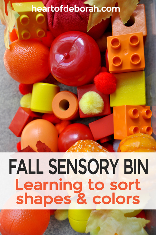 Toddler fall sensory bin perfect for fun and learning. Organize the objects by common mathematical characteristics such as circles and squares or big and little.