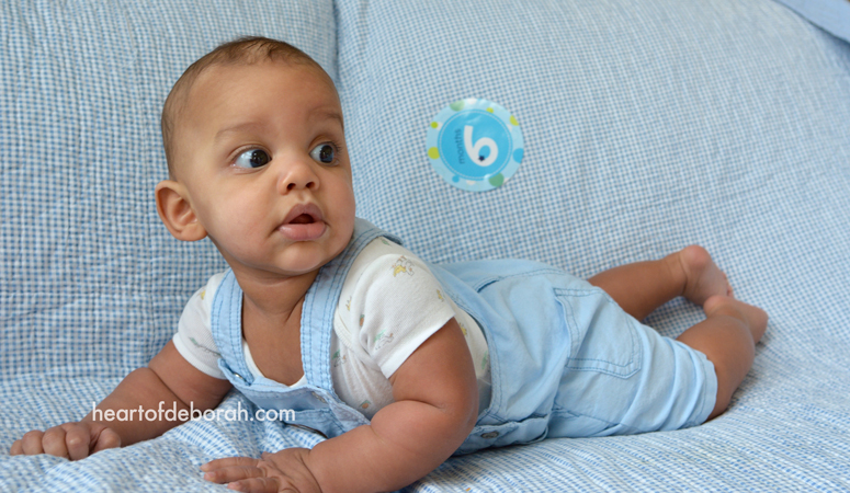 Our baby boy is 6 months old! Read about what he has been up to this month in this life lately post.