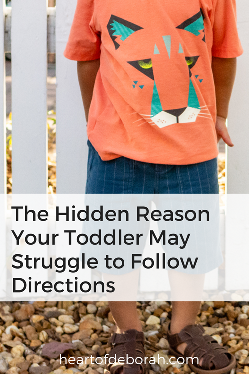 Do you have a toddler who struggles to follow directions? Before you discipline their strong willed behavior read this! The reason for your child's behavior may not be what you think. #parenting #toddlerlife #discipline #positiveparenting
