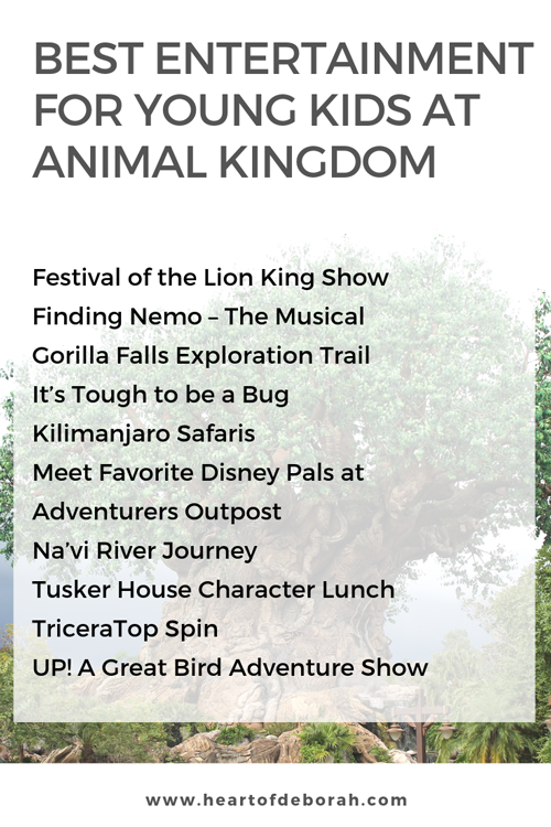 The best rides and shows at Disney World's Animal Kingdom for young kids! Preschoolers and toddlers will love these activities.